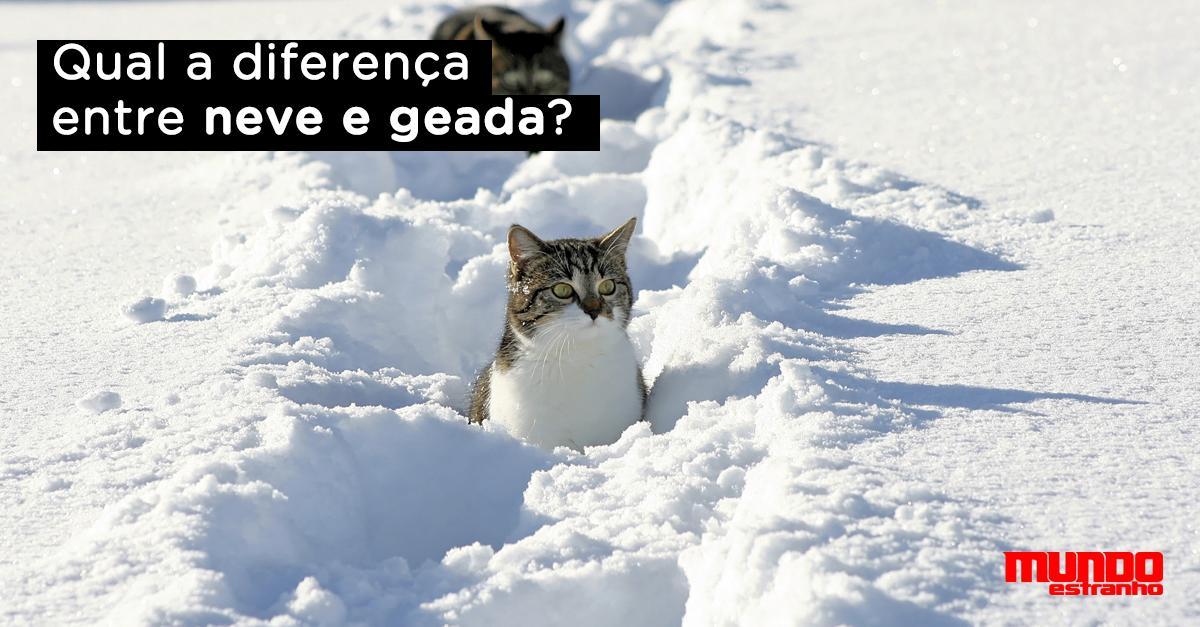 Qual a diferença entre neve e geada? http://t.co/UMzrurCRvX