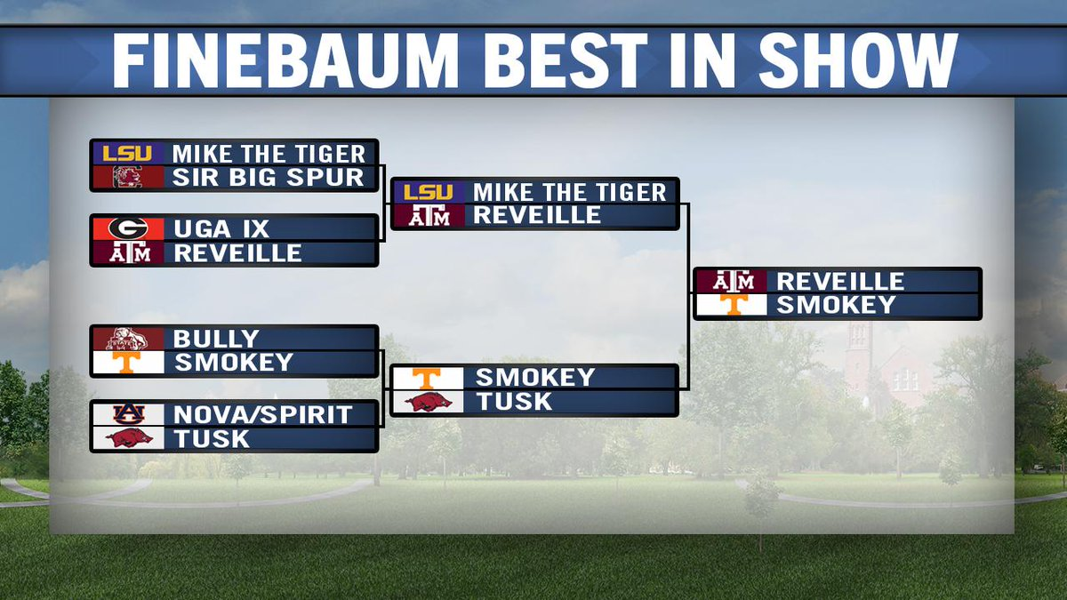 FINAL ROUND! Who is the best live mascot in the SEC? #FinebaumBestInShow  RT for Smokey  Fav for Reveille http://t.co/uPqD0GHmnN