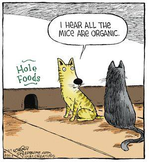 Image result for mice are organic whole food