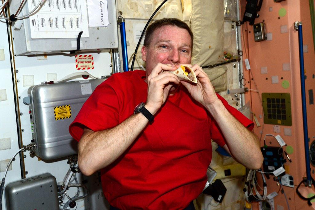 Space is cool, but NASA's cheeseburgers look gross