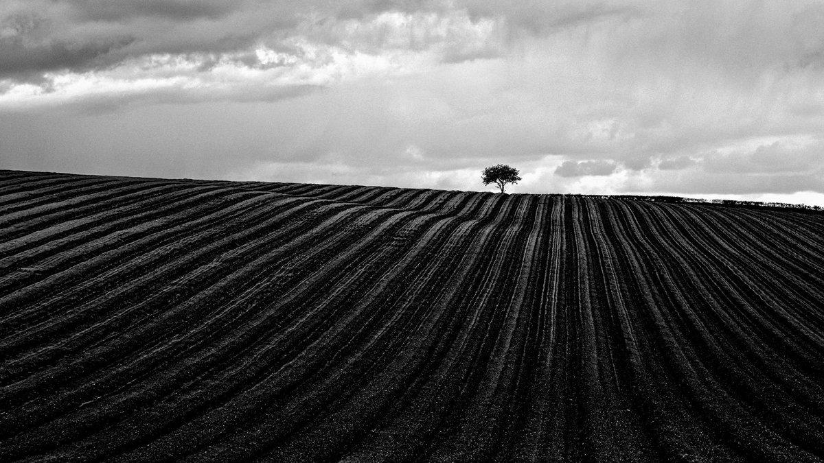 """Lines"" by John Purchase https://t.co/LI9z9u9A3T #Photo #500px http://t.co/RbW2Hpqxrf"