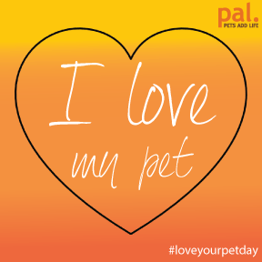 In honor of #LoveYourPetDay, help us spread the love and proudly RT this badge and tell the world you love your pet! http://t.co/SpI65ufxFg
