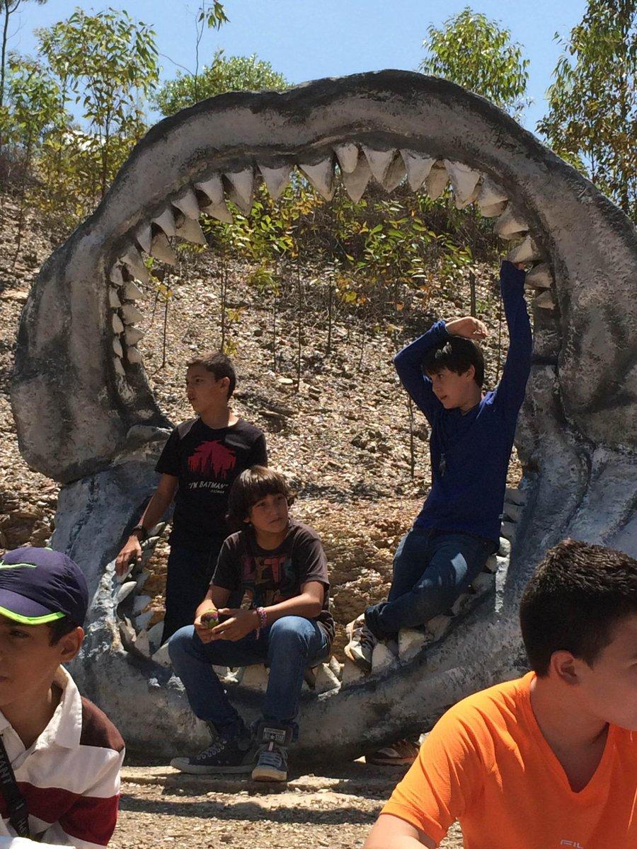 Gimnasio La Colina On Twitter En El Parque Gondava En Villa De Leyva Encontramos Replicas Que Han Construido De Los Dinosaurios En Su Tamano Real Http T Co Jmkjwoaneh Villa de leyva vacation rentals. en el parque gondava en villa de leyva