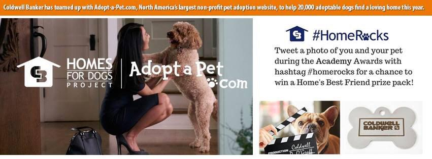 Wondering why all the pet posts? @coldwellbanker + @AdoptaPetcom have teamed up http://t.co/2clBDaUEhd #HomeRocks http://t.co/94ldqHk4Yv