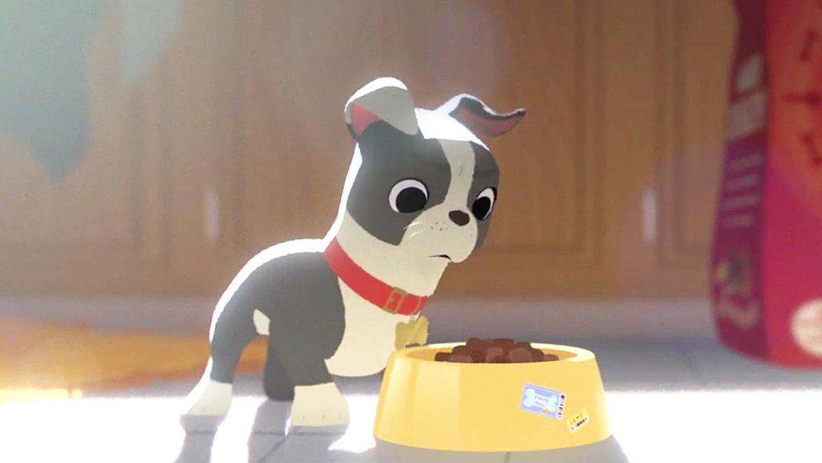 短編アニメーション映画賞、受賞は「愛犬とごちそう」!ディズニー強し。堤大介さんの「ダム・キーパー」は受賞ならず。残念。#アカデミー賞 pic.twitter.com/ECbxJBXv6V
