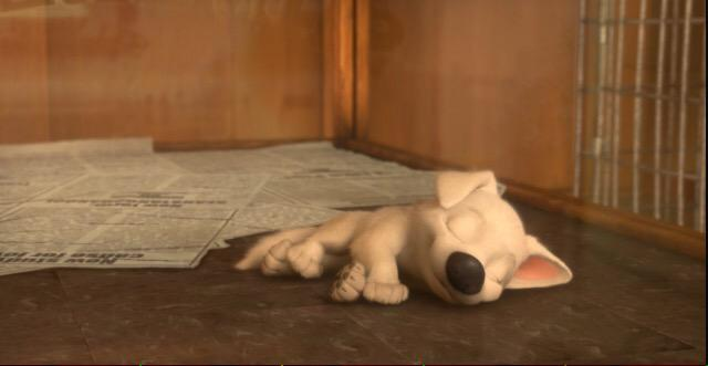 Bolt Puppy No Twitter Openrp The Pup Laid In A Cage In A Pet Shop Asleep Being The Last Puppy Left In The Shop 3 Min Before Closing Time Http T Co Er9edb1o7q