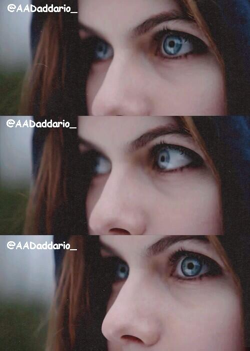 WHO HAS THE MOST BEAUTIFUL EYES DIVAS RT TO ALEXANDRA DADDARIO AND FAVORITE FOR DAKOTA JOHNSONpictwitter TRbbPLNIuu