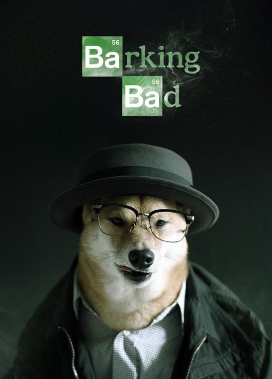 HouseBreaking Bad #DogTVShows http://t.co/6kULdeNY2o