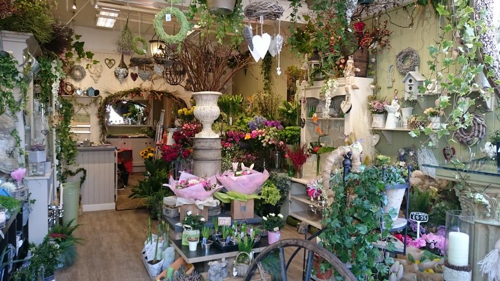 Natasha reynolds on twitter lovely to see some new shops for Flower shop design layouts