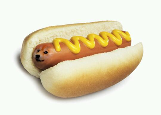 doge on twitter wow such hot very mustard so meat many bun. Black Bedroom Furniture Sets. Home Design Ideas