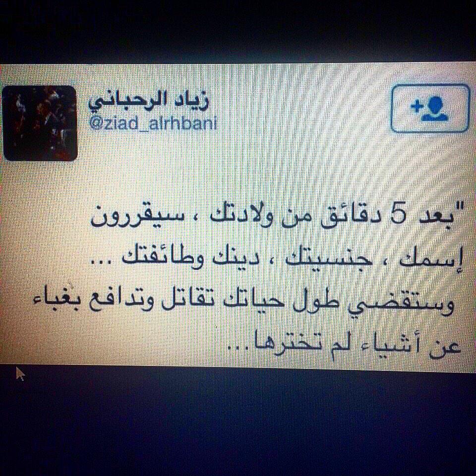 Dina Shoman on Twitter: