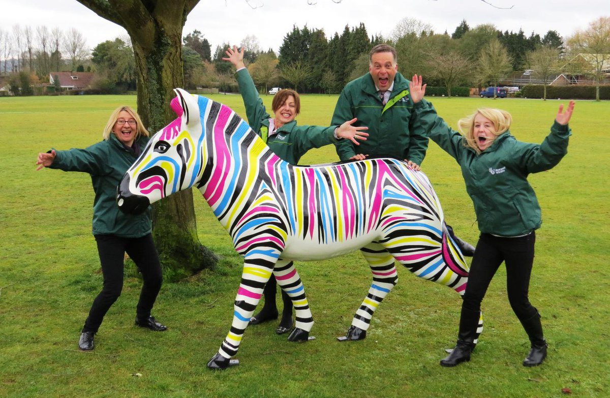 The zebra is out of the bag!! Marwell's #zanyzebras has officially launched!! http://t.co/G8j7mMdGRs