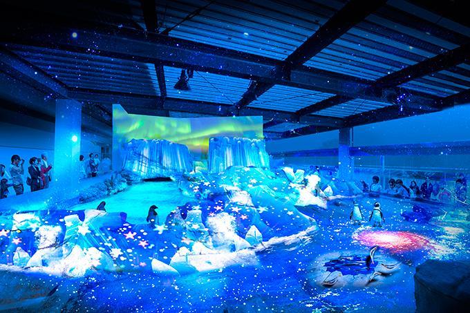 京都水族館で開業3周年を祝う新企画、大水槽と3Dプロジェクションマッピングが夢の共演 fashion-press.net/news/15594 pic.twitter.com/oOmdccobdY