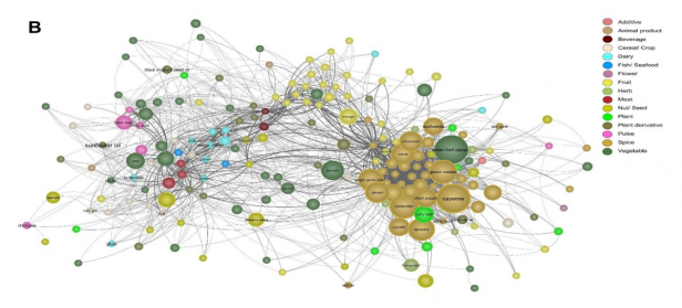 Network of spices