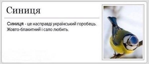 В Черновцах люстрировали областного прокурора - Цензор.НЕТ 4979