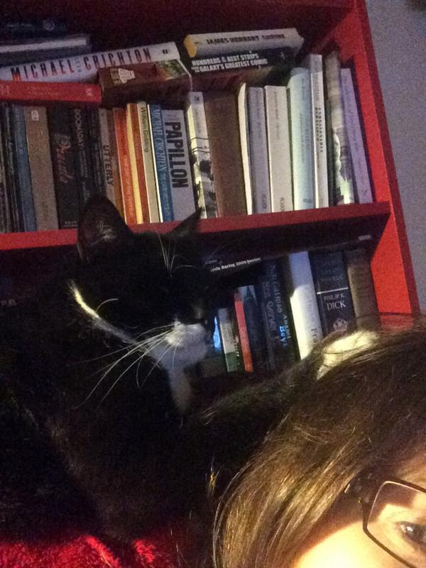"""""""@NicVig:Here's one of your old boys, Sox, making himself comfortable. #BlackCatSelfie http://t.co/zgSNmjhJm7"""" so happy he has settled 😻👌"""