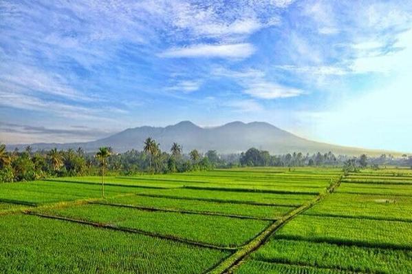 "I Love Sukabumi A Twitteren: ""Pematang Sawah Dipadukan Dengan Background  Gunung Gede Pangrango Menjadi Lukisan Alam Yg Akan Menemani Pagi Anda  Http://t.co/8BRxBUGeon"""