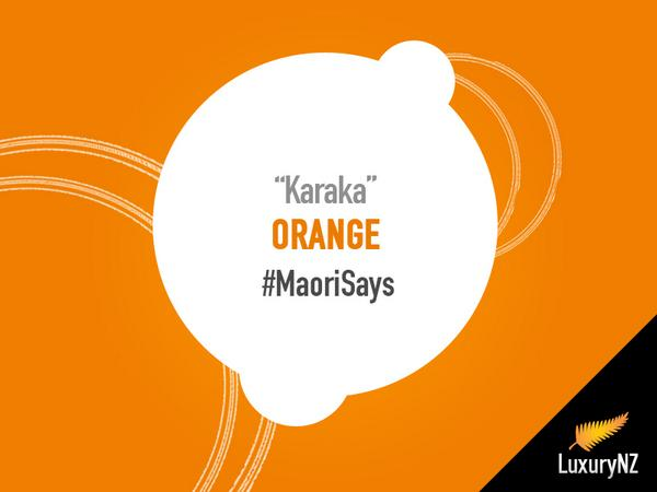 "Do you like orange color? In Maori Language it's called ""Karaka"" #MaoriSays http://t.co/drPG3l6xao"