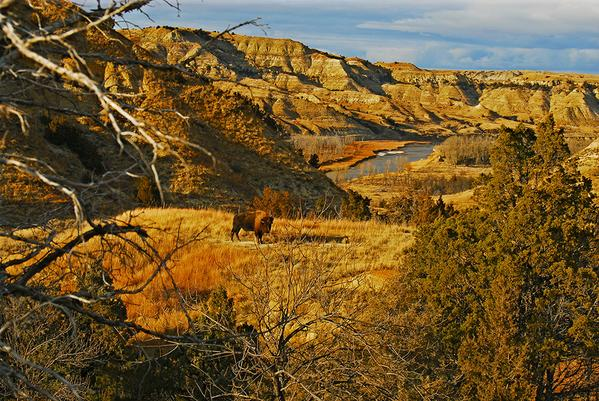 Happy birthday, Theodore Roosevelt! Let's celebrate with a great shot of @TRooseveltNPS #NorthDakota