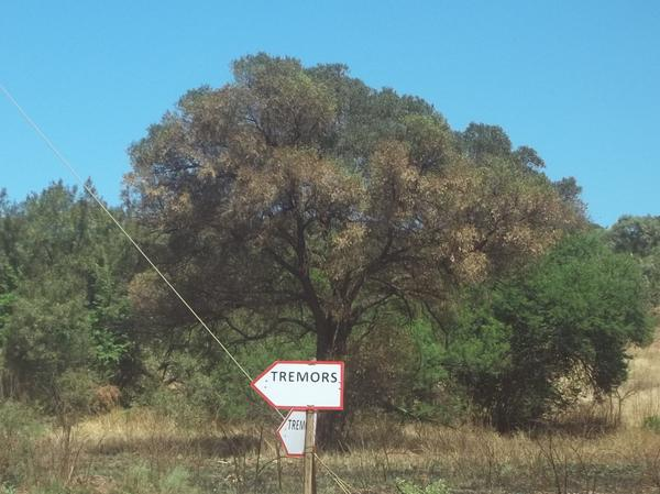Set sign in South Africa