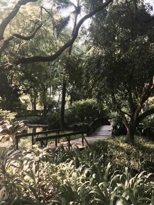 It's a glorious day to be in our gardens! Good morning Bangkok! http://t.co/Plplz647WM