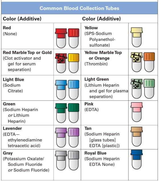 Bd Vacutainer Order Of Draw Chart Pictures To Pin On Color Top S For Phlebotomy Ahlam Albani Twitter Nursing Intern Common