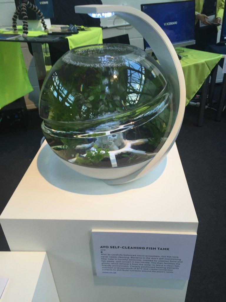 Photos and videos by wired uk wireduk twitter for Avo fish tank