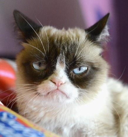 My benched Fantasy player got some good points last night. Not happy. #FantasyFootball #grumpy http://t.co/xLd7d9v3zC