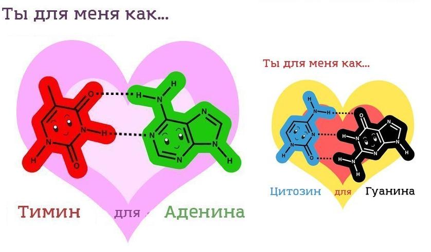 Прикольная картинка по биологии, картинки надписями