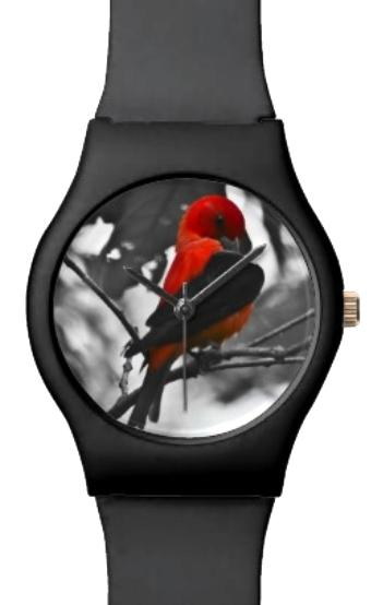 Male Scarlet #Tanager #Watch #Bird #Nature #Photography pic.twitter.com/7Fhij5pewB  http:// bitly.com/ScarletTanWatch