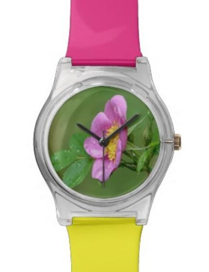 Pink Wild #Rose #Wildflower #Watch Wrist Watches #Photography #Nature https://t.co/KiJEqM0KlH https://t.co/LDPyhU8NmE