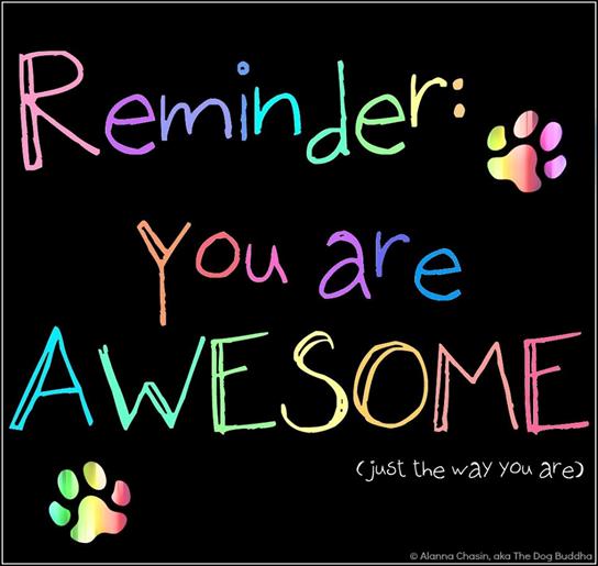 YOU are #AWESOME, just the way you are! #JoyTrain #Joy #Kindness #BeLove #BeKind #MentalHealth #Mindfulness #GoldenHearts #IAM #StarFishClub #FamilyTrain #kjoys00 #TuesdayMorning #TuesdayThoughts #TuesdayMotivation RT @LilacAuraFairy