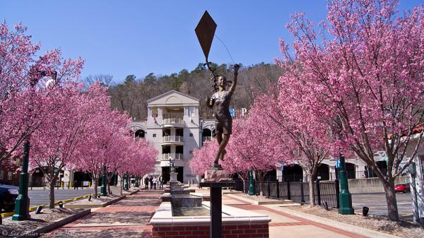 Have a glorious day and get out and play!  #CherryBlossoms #Photography #HotSprings #Arkansas