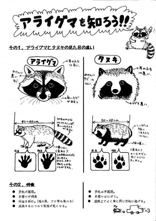 タヌキとアライグマの見分け方は定期的にツィートしていけ http://t.co/YN2nJWWMsH