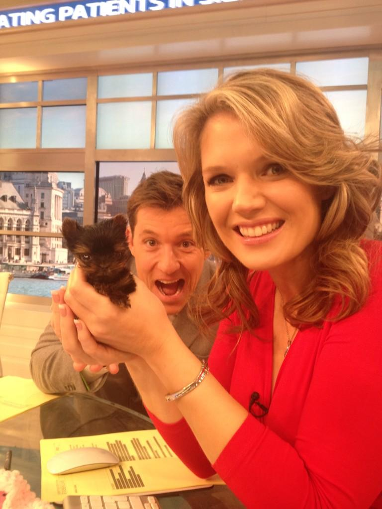RT @Lauratobin1: Cute alert! No not @benshephard or @CharlotteHawkns Belle! Is she the smallest puppy in the world? She is the cutest http:…