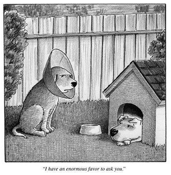 This rejected New Yorker cartoon might just be the best New Yorker cartoon of all time: http://t.co/pupoJtiSOJ http://t.co/m4sfslU5U7