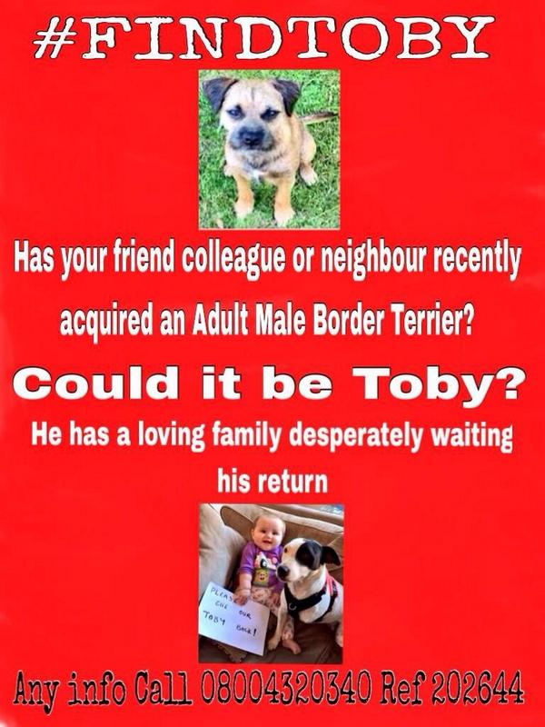 night draws to end, I'm cuddled up with M hoping @FindTobyTerrier goes home to his tmrw #findtoby #findtobyterrier http://t.co/pHuH5GZKBr