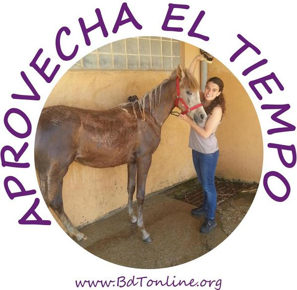 Thumbnail for Lara porfin puede estar con caballos