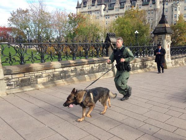Canine unit running to Parliament Hill http://t.co/jaEeh0JIpc