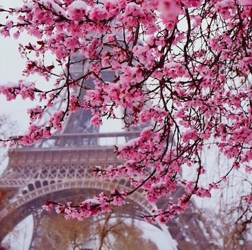 Postcards from Paris | Photo by @TravlandLeisure #WanderlustWednesday http://t.co/h5JbUrX9S3