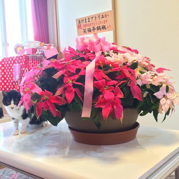 NHKの家族に乾杯で鶴瓶が家に来て、中越地震で壊れた床屋を廃業して母の店に作り変えたから地震の日はこの店の記念日!って話をしたんだけどまさかこんな花が贈られてくるとは。鶴瓶イケメン過ぎるだろ。ありがとう。今日で中越地震から10年です。