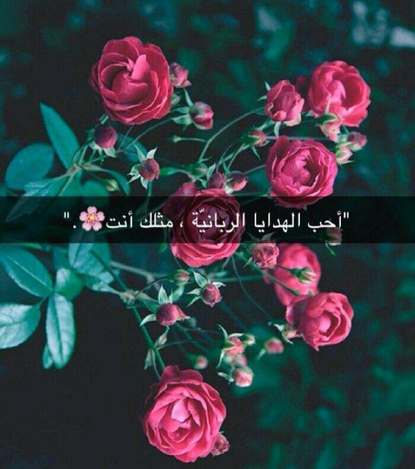 لاجلك ي رفيقتي Noramama3 Twitter