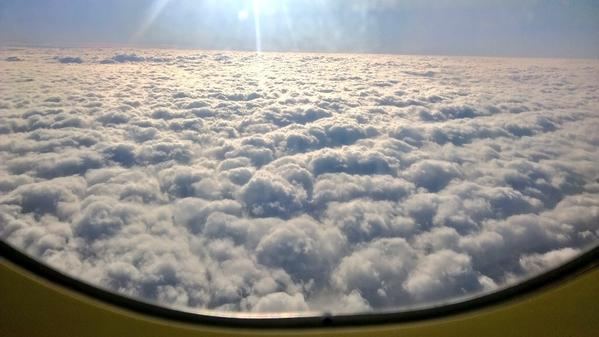 Fluffy @FlyAirNZ ✈ to Wellington today http://t.co/sTvLDnjvwX