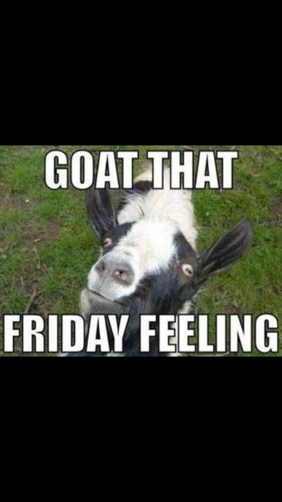 Ohhhh yeah you goat that Friday feeling?  🎉🍻😛 http://t.co/2StyGVDegc