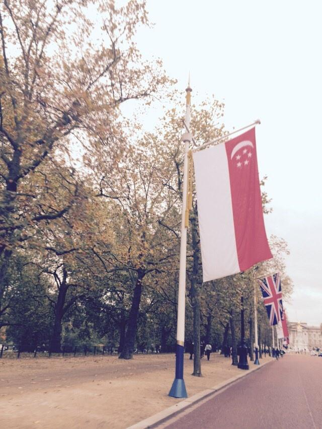 What flag is this down the Mall?? http://t.co/ZJA5ZKpigu