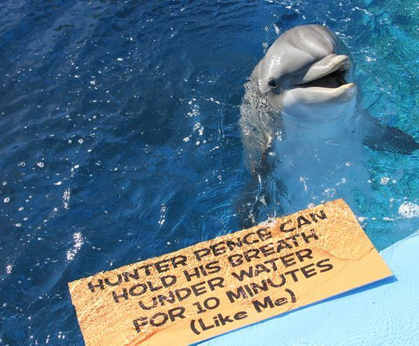 This needs to stop RT @nbcbayarea Yes, yes, yes! Liberty the bottle nose dolphin & @HunterPence have a lot in common. http://t.co/RYOhdUfWN6