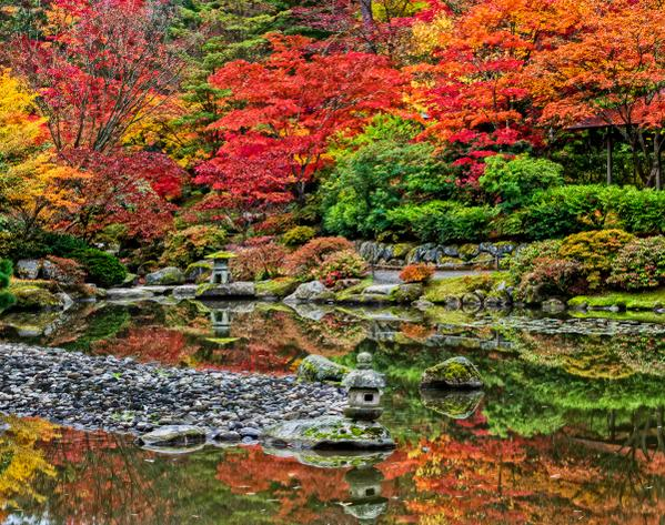 @MeredithFrost Japanese Garden here in Seattle in the Fall http://t.co/ZM9UBHX1KX