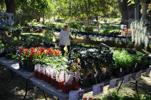 Ucr Botanic Gardens 50th Anniversary Festival