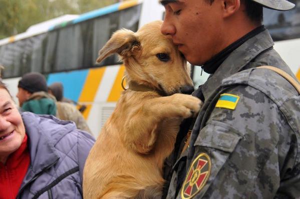 Выборы в ВР не состоятся в 15 округах на Донбассе, - данные ЦИК - Цензор.НЕТ 8919