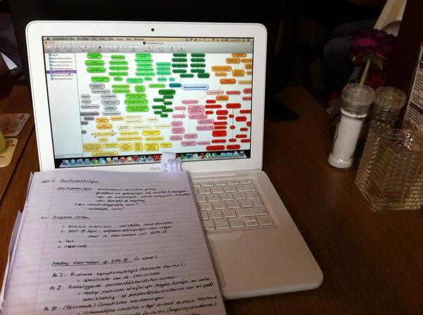 Studeren in een ideale leeromgeving: #ducommerce met @sweeting_l Ik aan t mindmappen, Leo verslagen schrijven.<br>http://pic.twitter.com/4fnNQ46n1B